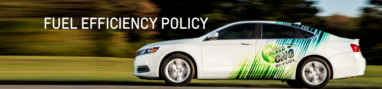 FUEL EFFICIENCY POLICY